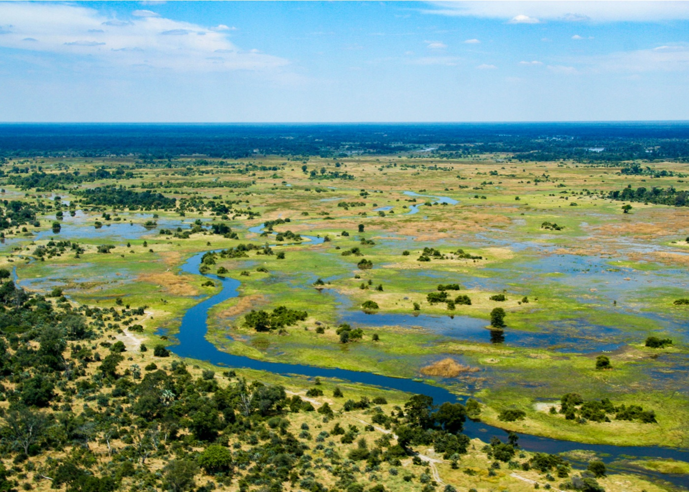 vast inland river delta in northern Botswana covered with forest